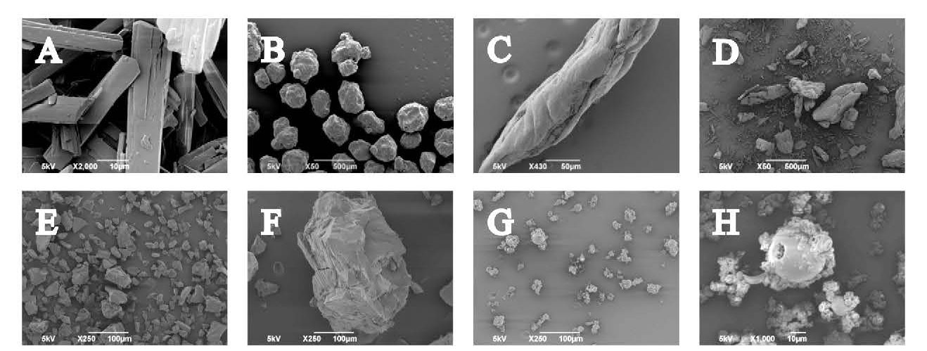 Using powder testing to optimise the processing characteristics of amorphous solid dispersions